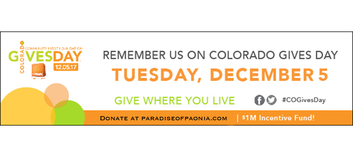 Colorado Gives Day ad