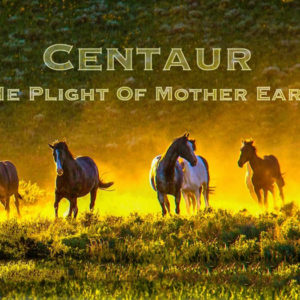 Documentary Film Series – Centaur