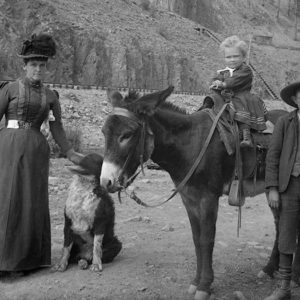 Colorado Experience – Cinema on the Plains / Ladies of the Mines